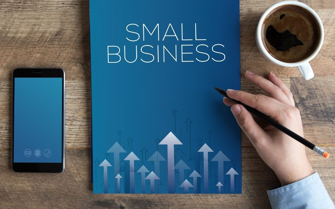 Programa nacional de apoio às microempresas e empresas de pequeno porte (PRONAMPE)